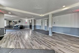 Photo 25: 337 1717 60 Street SE in Calgary: Red Carpet Apartment for sale : MLS®# A1067174