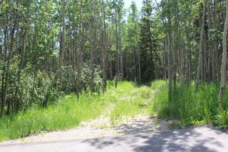 Photo 7: 25255 Bearspaw Place in Rural Rocky View County: Rural Rocky View MD Land for sale : MLS®# A1013795