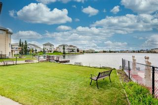 Photo 48: 265 Coral Shores Cape NE in Calgary: Coral Springs Detached for sale : MLS®# A1145653