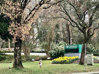 """Photo 24: 9 3211 NOEL Drive in Burnaby: Sullivan Heights Townhouse for sale in """"Cameron"""" (Burnaby North)  : MLS®# R2553021"""