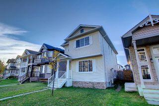 Photo 47: 80 Taralake Road NE in Calgary: Taradale Detached for sale : MLS®# A1149877