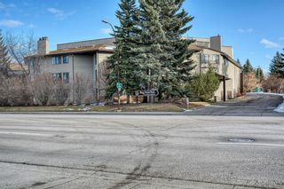 Photo 2: 201 2425 90 Avenue SW in Calgary: Palliser Apartment for sale : MLS®# A1052664