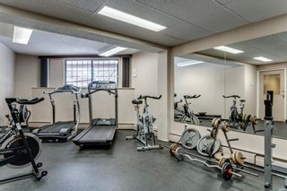 Photo 39: 503 300 Meredith Road NE in Calgary: Crescent Heights Apartment for sale : MLS®# A1041740