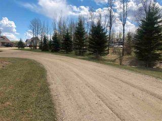 Photo 2: 97-15065 Twp Rd 470: Rural Wetaskiwin County Rural Land/Vacant Lot for sale : MLS®# E4243872