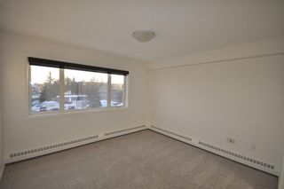 Photo 9: 306 790 Kingsmere Crescent SW in Calgary: Kingsland Apartment for sale : MLS®# A1065637