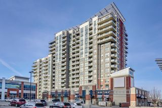 Photo 1: 711 8710 HORTON Road SW in Calgary: Haysboro Apartment for sale : MLS®# A1071641