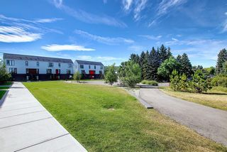Photo 36: 3543 69 Street NW in Calgary: Bowness Row/Townhouse for sale : MLS®# A1023919