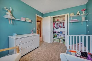 Photo 23: 154 SAGEWOOD Landing SW: Airdrie Detached for sale : MLS®# A1028498