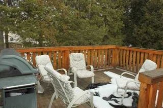 Photo 15: 267 Mcguires Beach Road in Kawartha Lakes: Rural Carden House (Bungalow-Raised) for sale : MLS®# X3453986