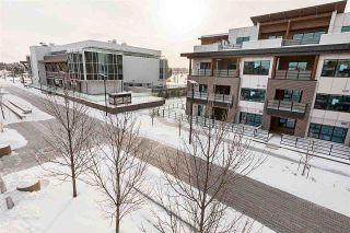 Photo 38: 303 141 FESTIVAL Way: Sherwood Park Condo for sale : MLS®# E4228912