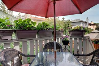 Photo 25: 110 DEERFIELD Terrace SE in Calgary: Deer Ridge House for sale : MLS®# C4123944