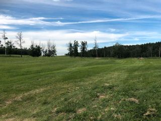 Photo 5: 272044A Township Rd 475: Rural Wetaskiwin County House for sale : MLS®# E4252559