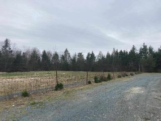 Photo 4: 123 Highway 357 in Musquodoboit Harbour: 35-Halifax County East Vacant Land for sale (Halifax-Dartmouth)  : MLS®# 202112647