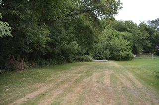 Photo 8: 2267 Highway 12 in Ramara: Brechin Property for sale : MLS®# S5358855
