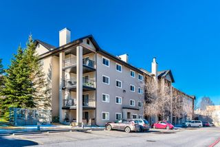 Photo 1: 3109 4975 130 Avenue SE in Calgary: McKenzie Towne Apartment for sale : MLS®# A1097325