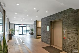 """Photo 5: 204 20078 FRASER Highway in Langley: Langley City Condo for sale in """"Varsity"""" : MLS®# R2602094"""