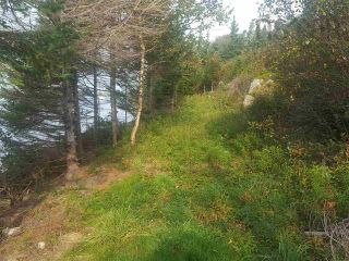 Photo 18: Back Bay Road in Terence Bay: 40-Timberlea, Prospect, St. Margaret`S Bay Vacant Land for sale (Halifax-Dartmouth)  : MLS®# 202121017