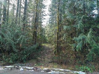 Photo 11: LOT 8 MACMILLAN Dr in : PA Sproat Lake Land for sale (Port Alberni)  : MLS®# 868768