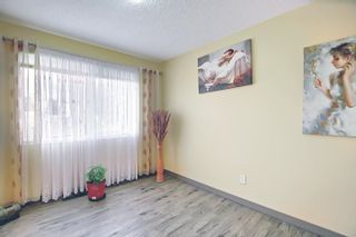 Photo 16: 13515 68 Street in Edmonton: Zone 02 House for sale : MLS®# E4253078