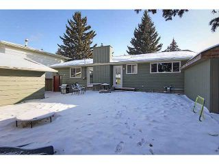 Photo 17: 1156 LAKE SUNDANCE Crescent SE in CALGARY: Lake Bonavista Residential Detached Single Family for sale (Calgary)  : MLS®# C3551944