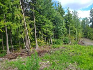 Photo 11: 1395 Taylor Road, in Sorrento: Vacant Land for sale : MLS®# 10229703