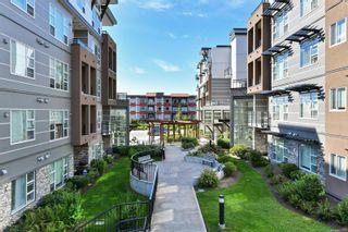 Photo 24: 305 1016 Inverness Rd in Saanich: SE Quadra Condo for sale (Saanich East)  : MLS®# 887970