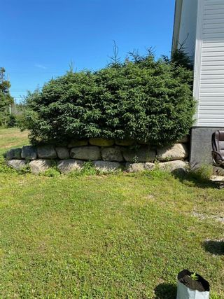 Photo 5: 209 Clayton Drive in Fox Point: 405-Lunenburg County Residential for sale (South Shore)  : MLS®# 202117636