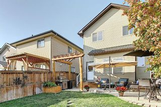 Photo 36: 90 WALDEN Manor SE in Calgary: Walden Detached for sale : MLS®# A1035686