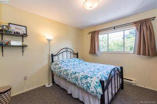 Photo 13: 918 Bay St in VICTORIA: Vi Hillside House for sale (Victoria)  : MLS®# 787949