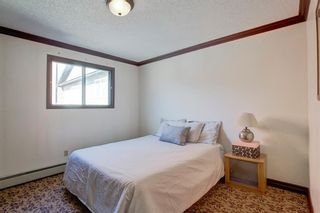 Photo 15: 203 917 18 Avenue SW in Calgary: Lower Mount Royal Apartment for sale : MLS®# A1099255