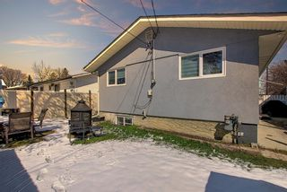 Photo 44: 1027 Penrith Crescent SE in Calgary: Penbrooke Meadows Detached for sale : MLS®# A1104837