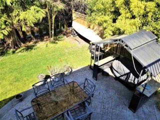 "Photo 39: 5455 CHAMBERLAYNE Avenue in Delta: Neilsen Grove House for sale in ""Victory Estates"" (Ladner)  : MLS®# R2558607"