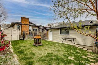 Photo 20: 5027 Whitestone Way NE in Calgary: Whitehorn Detached for sale : MLS®# A1110714