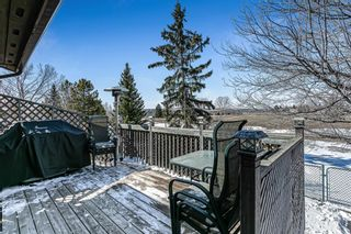 Photo 31: 3 Downey Green: Okotoks Detached for sale : MLS®# A1088351