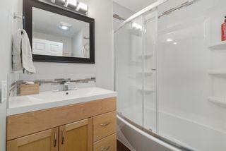 Photo 19: 11215 54 Avenue in Edmonton: Zone 15 House for sale : MLS®# E4253376