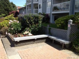 Photo 13: 205 3206 Alder St in VICTORIA: SE Quadra Condo for sale (Saanich East)  : MLS®# 673559