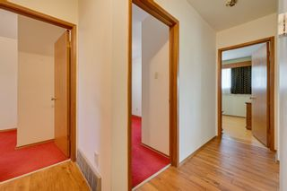 Photo 22: 7228 131A Avenue in Edmonton: Zone 02 House for sale : MLS®# E4252234