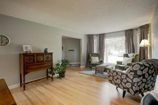 Photo 7: 113 Mt Sparrowhawk Place SE in Calgary: McKenzie Lake Detached for sale : MLS®# A1130042