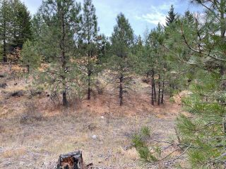 Photo 8: 490 WAPITI Way, in Osoyoos: Vacant Land for sale : MLS®# 191574