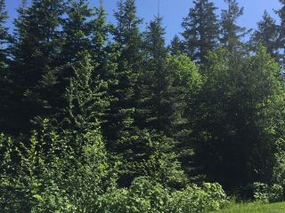 Photo 2: LT 3 Ross Ave in COURTENAY: CV Courtenay South Land for sale (Comox Valley)  : MLS®# 760343