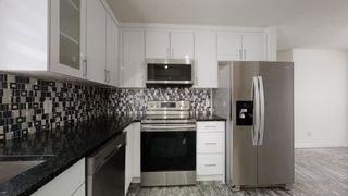 Photo 12: 740 JOHNS Road in Edmonton: Zone 29 House for sale : MLS®# E4250629