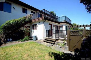 Photo 18: 913 Nicholson St in VICTORIA: SE High Quadra House for sale (Saanich East)  : MLS®# 789694