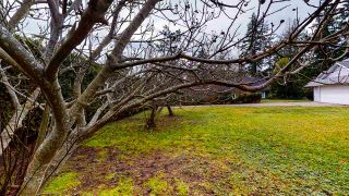 Photo 36: 5555 WINTER Road in Sechelt: Sechelt District House for sale (Sunshine Coast)  : MLS®# R2527454