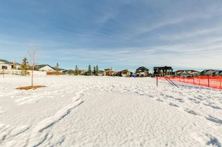 Photo 30: 320 Sunset Way: Crossfield Detached for sale : MLS®# A1061148