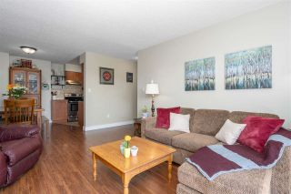 """Photo 5: 401 1210 PACIFIC Street in Coquitlam: North Coquitlam Condo for sale in """"Glenview Manor"""" : MLS®# R2500348"""