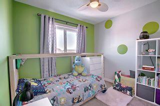 Photo 29: 132 Ventura Way NE in Calgary: Vista Heights Detached for sale : MLS®# A1081083