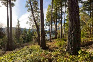"Photo 6: Lot 19 FLAGSHIP Road in Garden Bay: Pender Harbour Egmont Land for sale in ""Pender Harbour Landing Estates"" (Sunshine Coast)  : MLS®# R2336244"