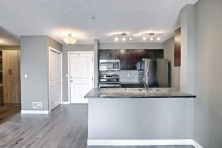 Photo 3: 4305 1317 27 Street SE in Calgary: Albert Park/Radisson Heights Apartment for sale : MLS®# A1107979