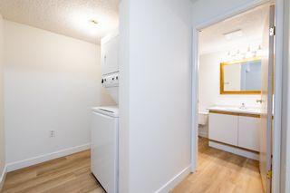 Photo 21:  in Edmonton: Zone 08 Condo for sale : MLS®# E4255270