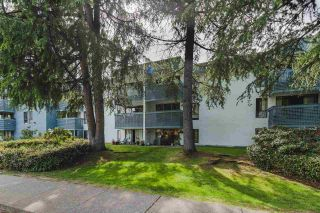"""Photo 23: 207 601 NORTH Road in Coquitlam: Coquitlam West Condo for sale in """"Wolverton"""" : MLS®# R2579384"""